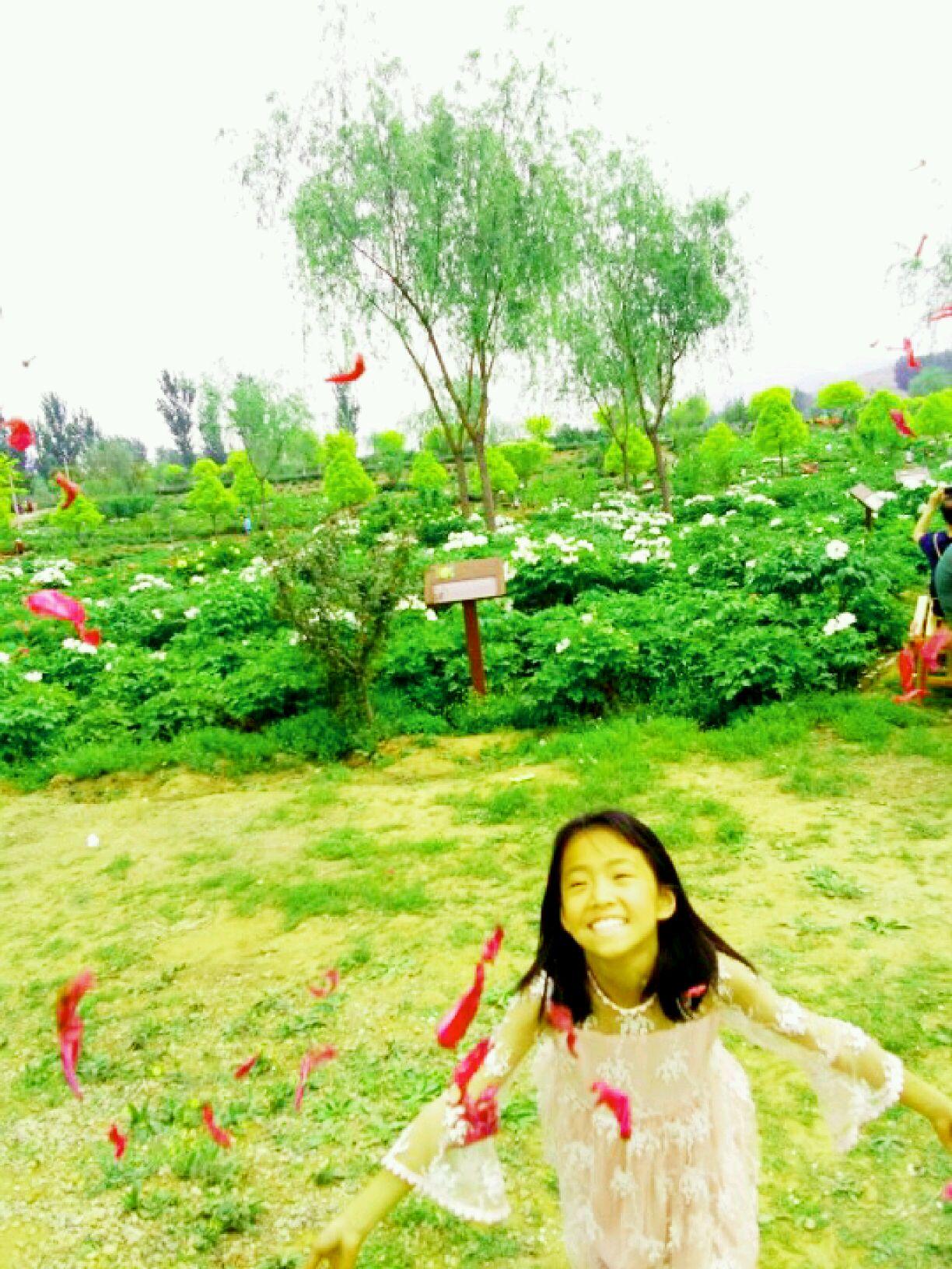 狼牙山牡丹花园