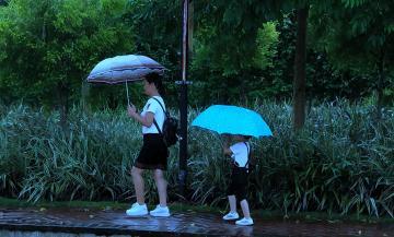 【x21】秋雨