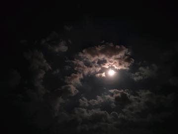 十五的月亮十六园