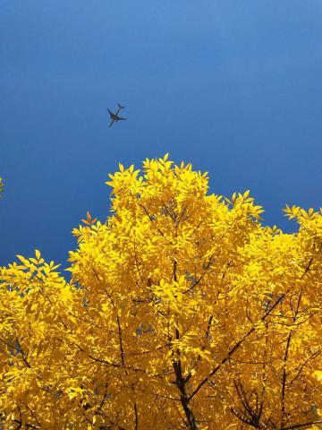 北京的秋天