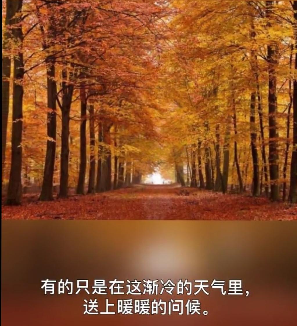 IMG_20181016_022555.JPG