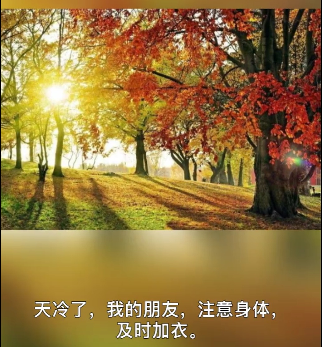 IMG_20181016_022624.JPG