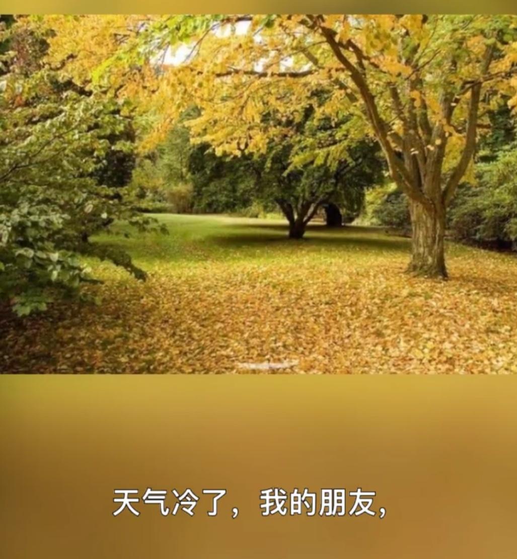 IMG_20181016_022518.JPG
