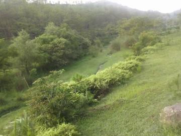 农村的风景与生活