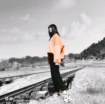 【x23】风之谷