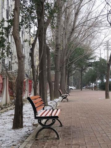 【寻冬】冬日的寂寞
