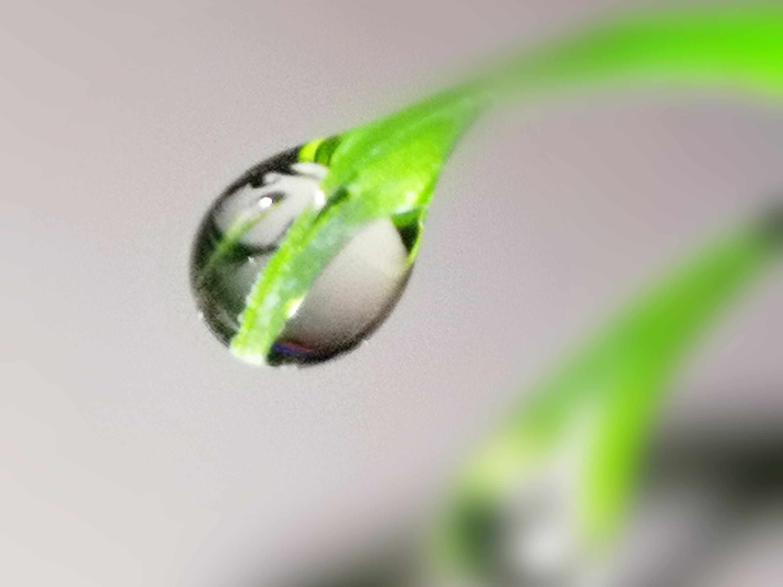 PicsArt_01-11-11.08.54.jpg
