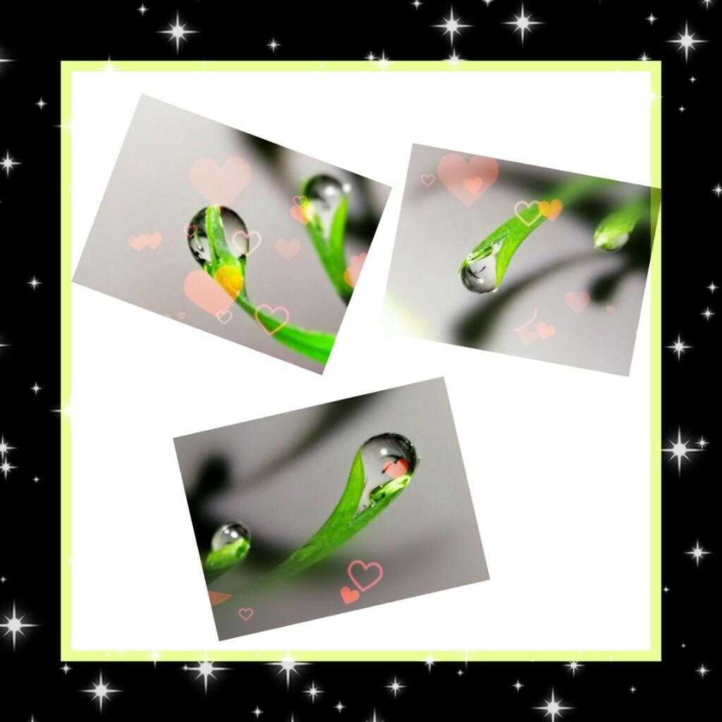 PicsArt_01-12-12.28.37.png