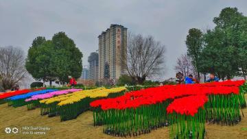 【NEX双屏版】春节城市公园风光