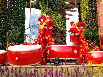 广州园林博览会1