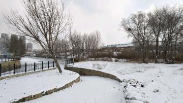 雪。2019.2.15