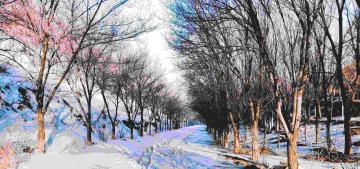 新疆乌鲁木齐第一次雅山晨跑