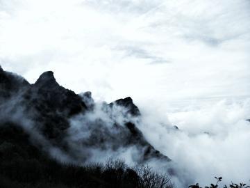 【X9】雾里微凉此生情