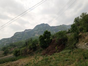 山里的空气真好!