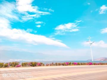 【iQOO摄影】夏天专属的颜色