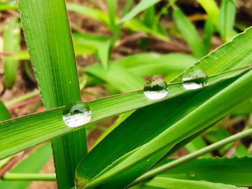 【x27Pro】雨后