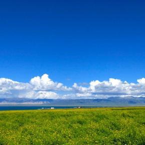 青海湖与茶卡