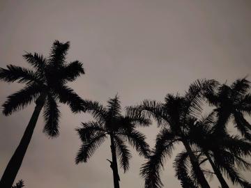 夜晚的天空