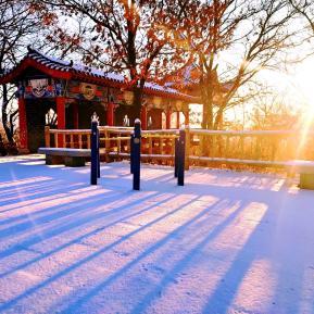 东山晴后雪