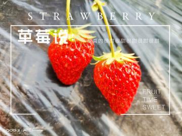 【iQOO 3】草莓说~我真的很甜